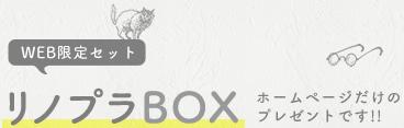 WEB限定セット!リノプラBOXは、ホームページ限定の資料セットです。